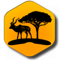 Logo Otji-Safaris